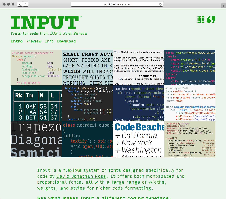 Input-website-Intro