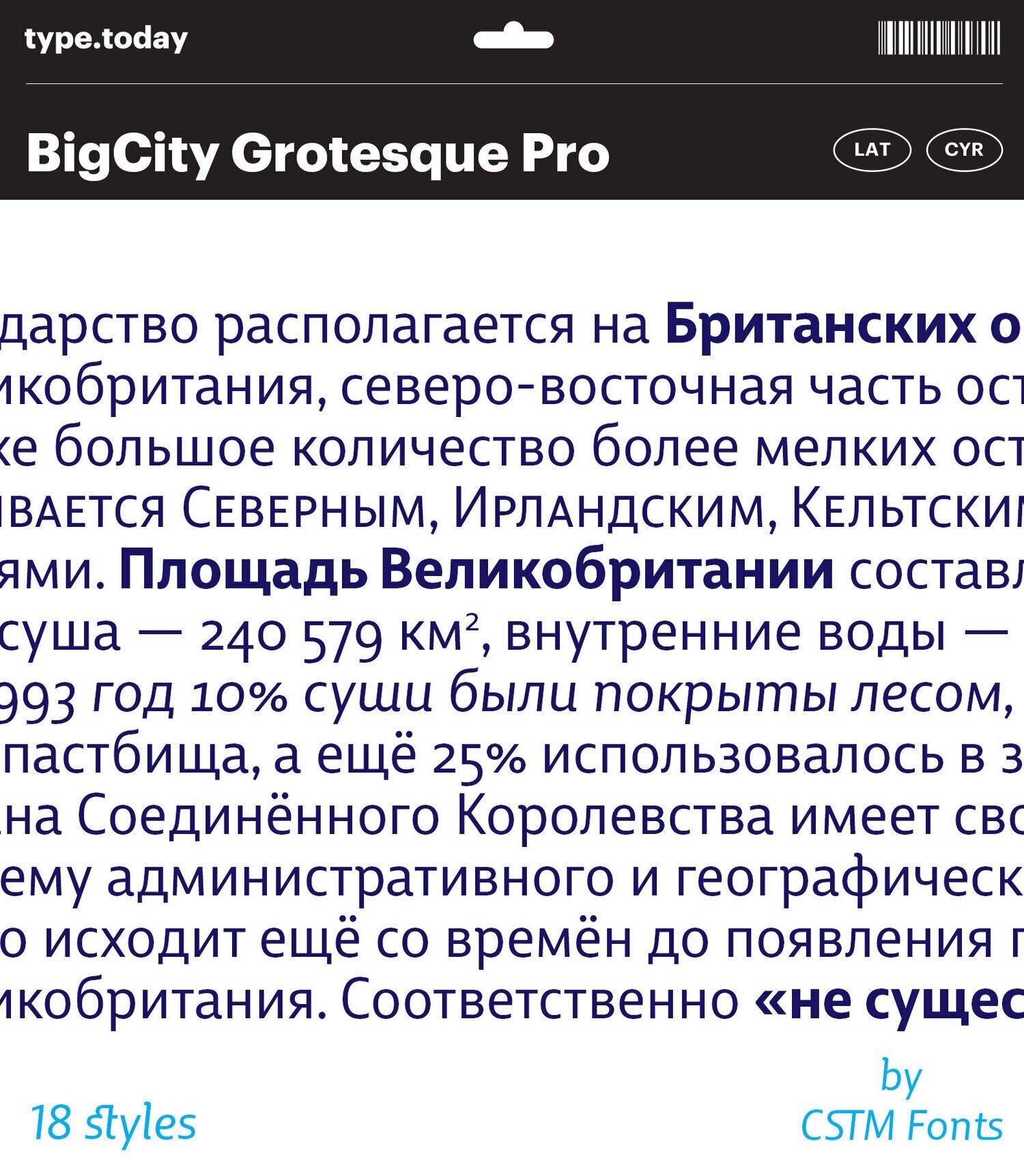 TT_BigCity_Body4