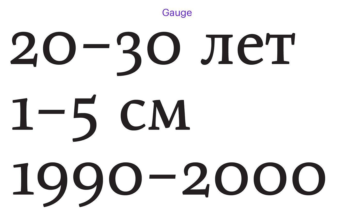 gauge_endash-09