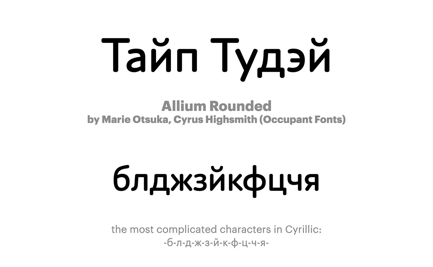 Allium-Rounded